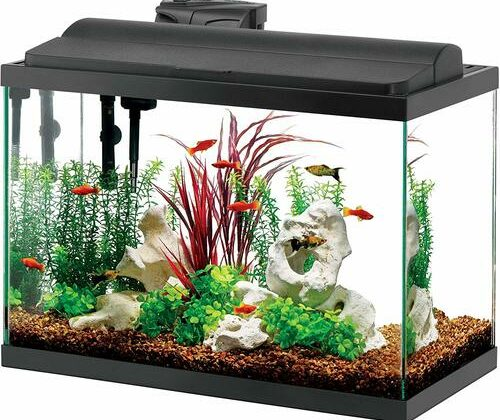 aqueon aquarium review